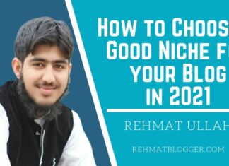 How to Choose a Good Niche for your Blog